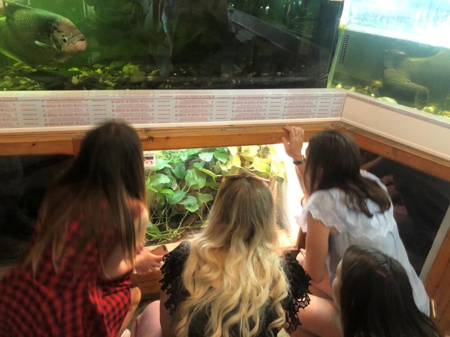 Майбутні вчителі складали іспит... серед екзотичних тварин і рослин