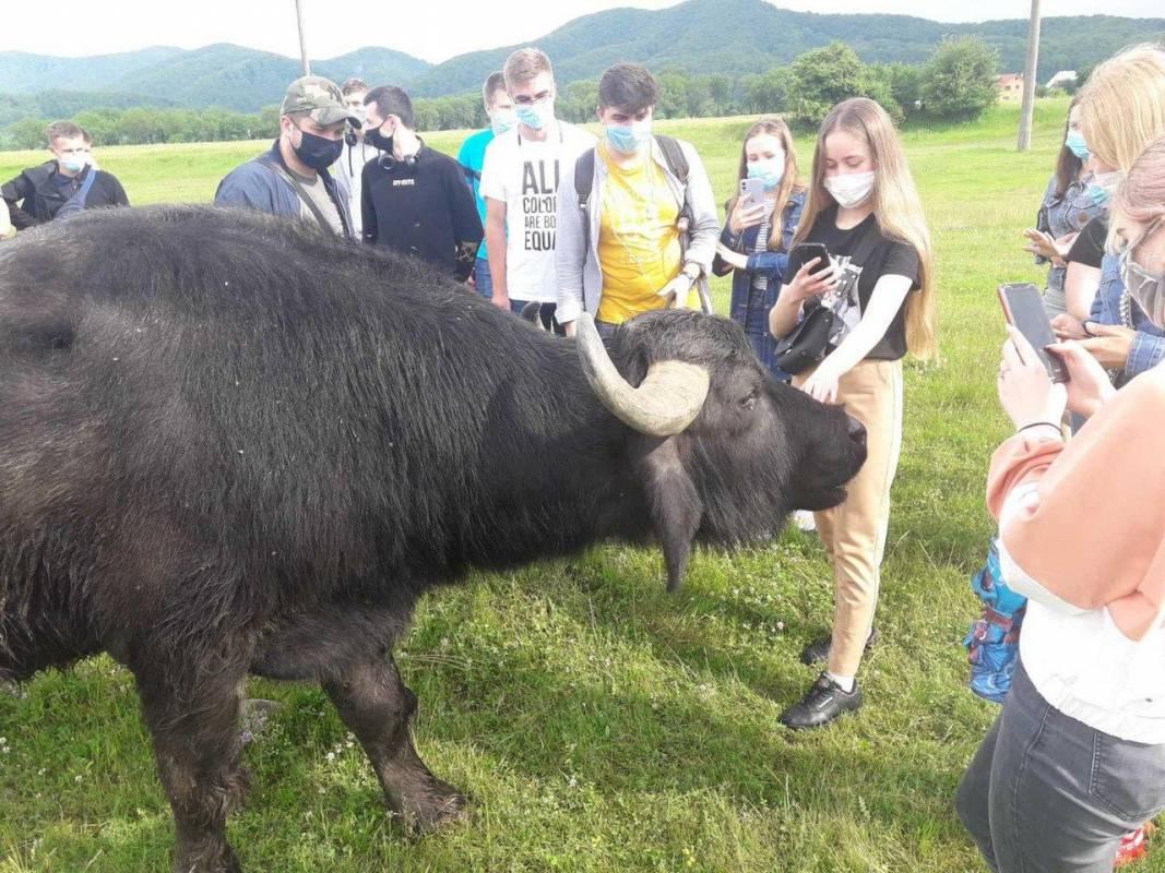 Студенти геофаку: карантин практиці не завада
